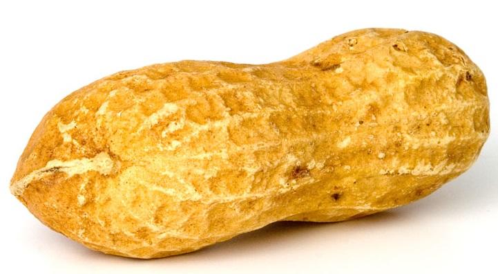 Peanut_large